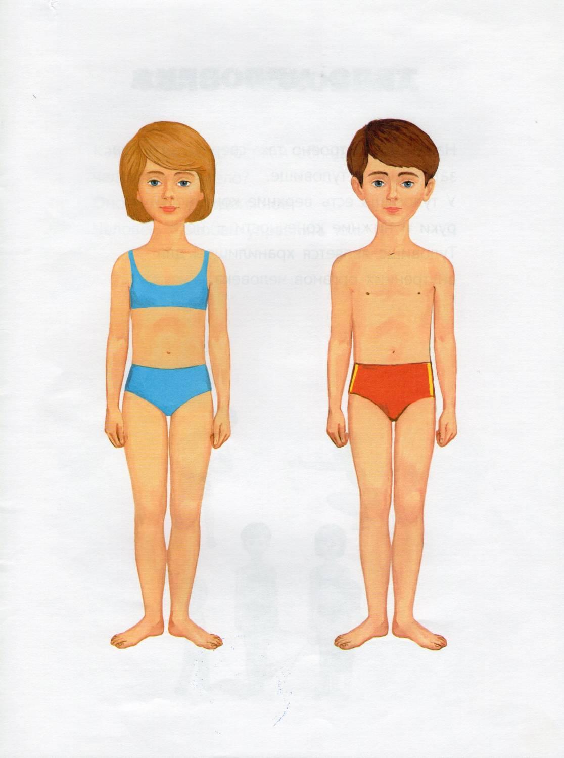 Фигура ребенка в 3 года фото